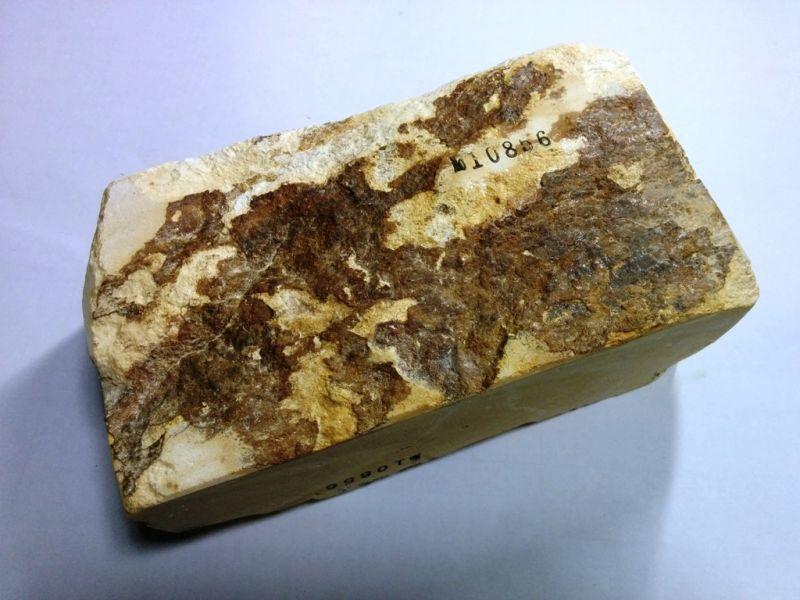 画像3: 伝統千五百年 天然砥石 古代伊豫銘砥  もくめ 1.6Kg 10856