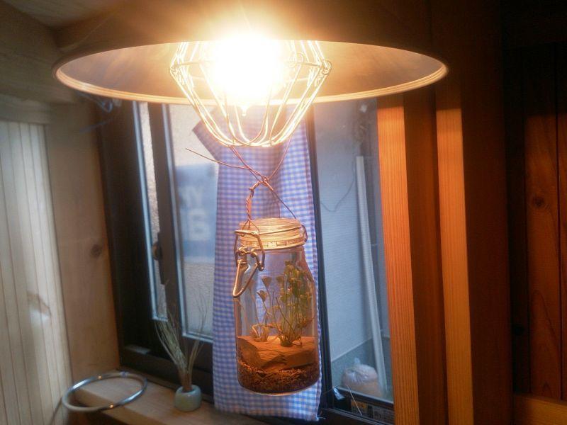 画像1: さゞれ鉢瓶栽+LED電球+傘電セード=3308サイビンマン