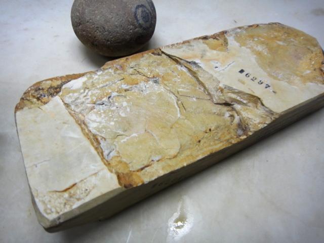 画像3: 天然砥石 山城銘砥 中世中山巣板例外の大極上 6297