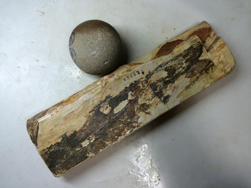 画像3: 天然砥石 正本山 山城銘砥 中世中山 なみと八寸 7827