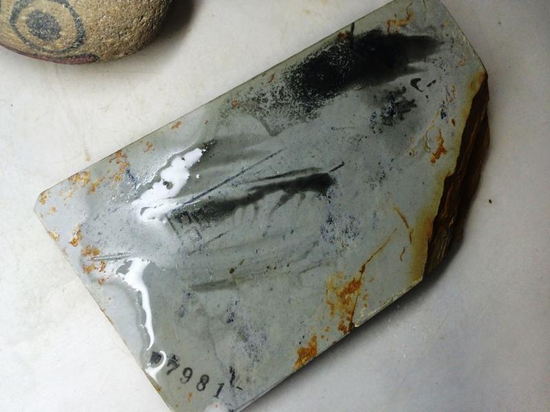 画像4: 天然砥石 正本山 山城銘砥 奥殿巣板 7981
